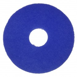 Disque bleu 450